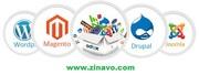 Zinavo-Ecommerce Website Design & Development Company in Bangalore